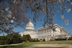 Le Capitole des USA, lieu de réunion du Congrès des États-Unis. Photo : Architecte du Capitole