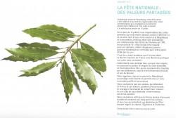 La fête nationale et la déclaration commune qui sera lue par les représentants des cultes à leurs fidèles au plus proche du 14 juillet