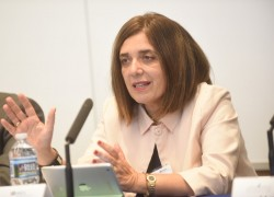 Diane Ala'i, représentante du bureau de la Communauté internationale bahá'íe auprès des Nations unies à Genève, prenant la parole lors de la réunion annuelle de l'American Society of Comparative Law.