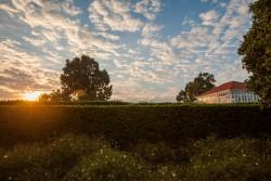 Lever de soleil sur le Mausolée de Bahá'u'lláh qui se situe également en Terre sainte