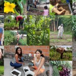 1597163538-self-sufficiency-fundaec-local-food-production-00