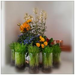 Une composition florale réalisée à l'occasion du nouvel an bahá'í pour faire entrer le printemps dans la maison.